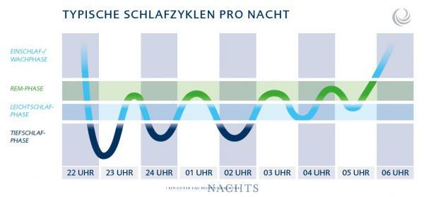 billerbeck-blog-Schlafphasen-diagramm